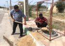 آغاز عمليات كاشت  ٤٠٠ نهال در روستاى سهموجنوبى توسط دهيارى